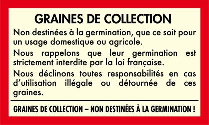 graines cannabis collection